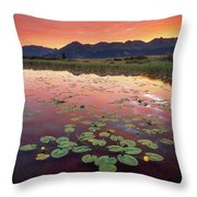 Dark Turns To Light Throw Pillow
