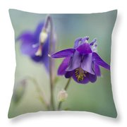 Dark Violet Columbine Flowers Throw Pillow