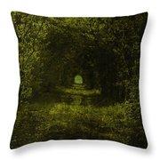 Dark Wood Throw Pillow