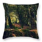 Dark Woods Throw Pillow