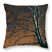 Dark Woods II Throw Pillow