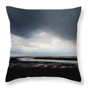Darker Days Throw Pillow