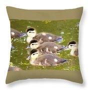 Darling Ducklings  Throw Pillow