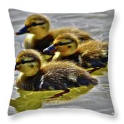 Darling Ducks Throw Pillow