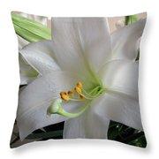 Darn Beautiful Flower Throw Pillow