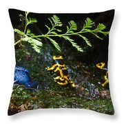 Dart Frogs On The Move Throw Pillow