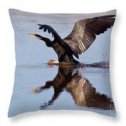 Darter Landing Throw Pillow