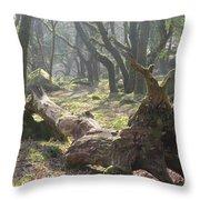 Dartmoor Woods Throw Pillow