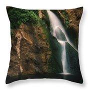 Darwin Falls - Death Valley Throw Pillow