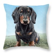 Daschund Throw Pillow