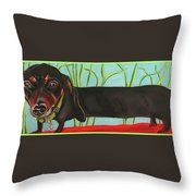 Dash Hound Throw Pillow