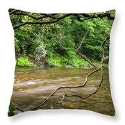 Davidson River Throw Pillow