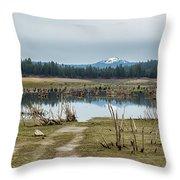 Davis Creek And Maiden Peak Throw Pillow