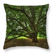 Dawes Arboretum Throw Pillow