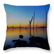 Dawn Delight Throw Pillow