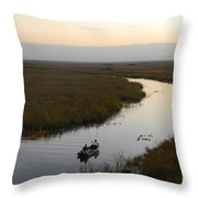 Dawn Everglades Florida Throw Pillow