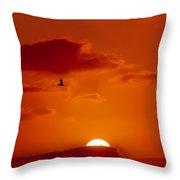Dawn Flight Throw Pillow