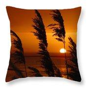 Dawn Grasses Throw Pillow