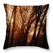 Dawn In The Trees Throw Pillow