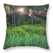 Dawn Light Throw Pillow