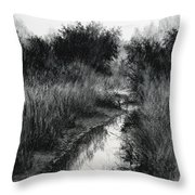 Dawn Marsh Throw Pillow