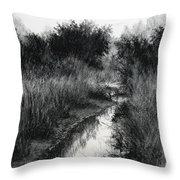 Dawn Marsh Throw Pillow
