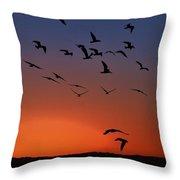 Dawns Action Throw Pillow
