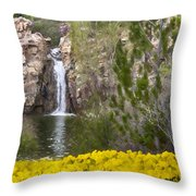 Day At The Falls Throw Pillow