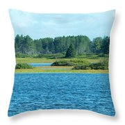 Day At The Wetlands Throw Pillow