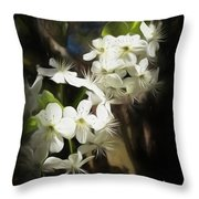 Day Dreamin Throw Pillow