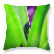 Day Gecko And Pineapple Plant Throw Pillow