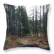Day In The Park Throw Pillow