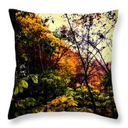 Day In The Woods  Throw Pillow