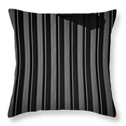 Day Light On Wall Throw Pillow