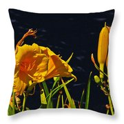 Day Lilies, Dark, Background Throw Pillow
