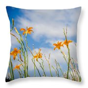 Day Lilies Look To The Sky Throw Pillow