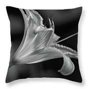 Day Lily 2 Bw Throw Pillow