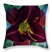 Day Lily Dark Throw Pillow