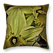 Day Lily In Yellow Throw Pillow