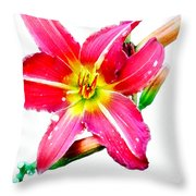 Day Lily No 2 Throw Pillow
