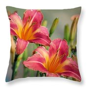Day Lily Twins Throw Pillow