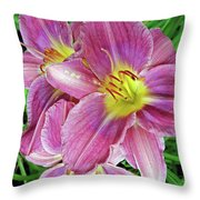 Day Lilys Throw Pillow
