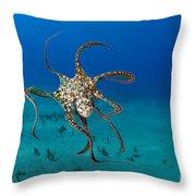 Day Octopus Throw Pillow