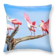 Day Of The Spoonbill  Throw Pillow