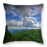 Day Tripping Throw Pillow