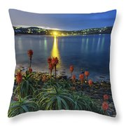 Daybreak And Cloudy Seascape And Aloe Vera Throw Pillow