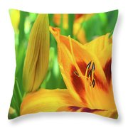 Daylily Bud And Bloom Throw Pillow