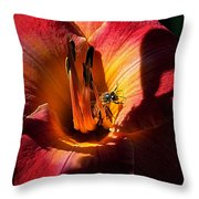 Daylily Collection # 19 Throw Pillow