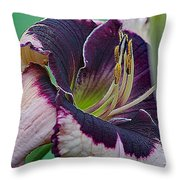 Daylily Collection #12 Throw Pillow