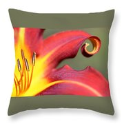 Daylily Curl Throw Pillow